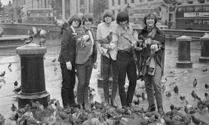 The Byrds and The Birds