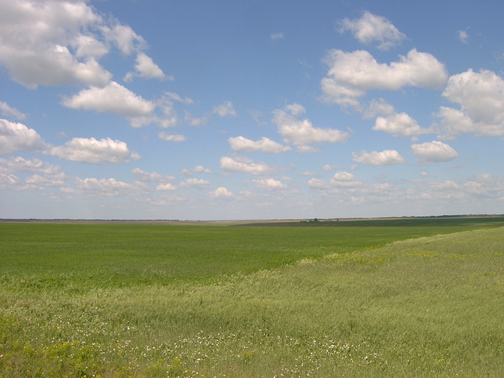 Steppes: www.jmeshel.com/110-mongolian-throat-singing-the-occidental-tourist