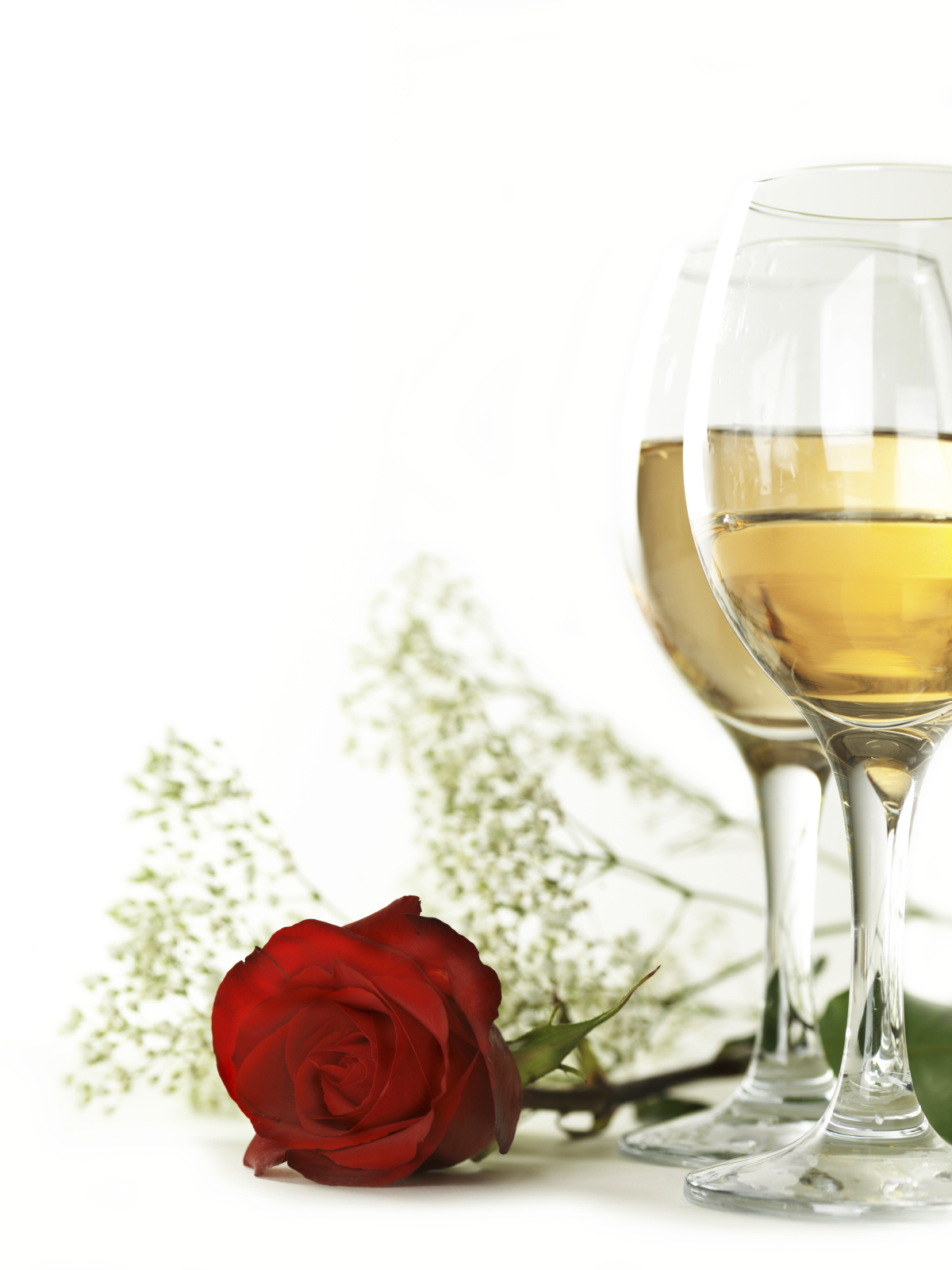 days of wine and roses Download days of wine and roses by patti page free #1 rated music site 65 million songs get lyrics ♫ music videos for your iphone.
