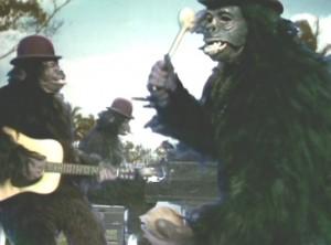 Nilsson gorillas, Coconut, BBC